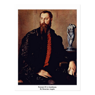 Portrait Of A Gentleman By Bronzino Angelo Postcard