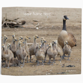 Portrait of a Large Canada Goose Family Vinyl Binders