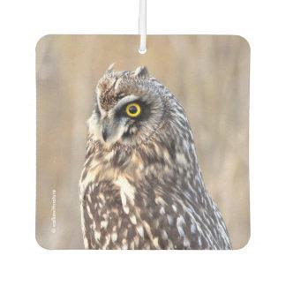Portrait of a Short-Eared Owl Car Air Freshener