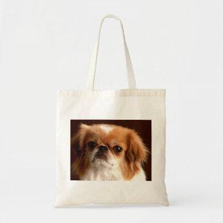 Portrait of a Spaniel dog