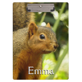 Portrait of a Squirrel Nature Animal Photography Clipboards
