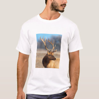 Portrait of a stunning bull elk T-Shirt
