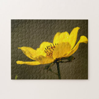Portrait of a Yellow Aster Jigsaw Puzzle