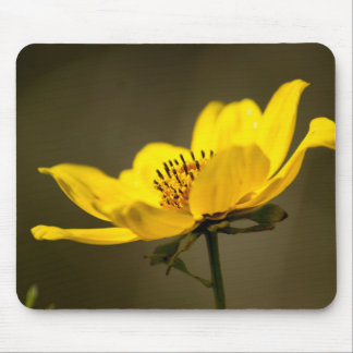 Portrait of a Yellow Aster Mouse Pad