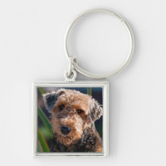 Portrait of an Airedale Terrier 1 Silver-Colored Square Keychain