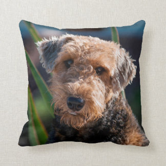 Portrait of an Airedale Terrier 1 Throw Pillow