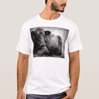 Portrait of an Angus T-Shirt