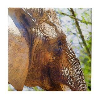 Portrait of an Elephant Tile
