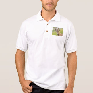 Portrait of an ibex polo shirt