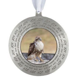 Portrait of an Immature Red Tailed Hawk Pewter Ornament