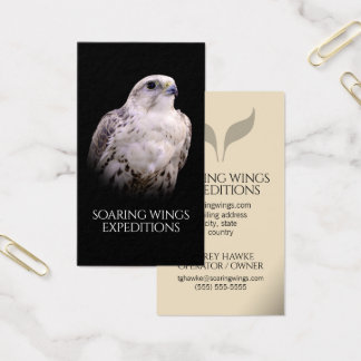 Portrait of an Inquisitive Saker Falcon Business Card