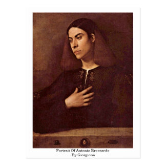 Portrait Of Antonio Broccardo By Giorgione Postcard