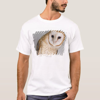 Portrait of barn owl (Tyto alba). T-Shirt