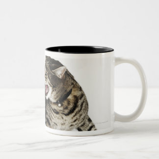 Portrait of cat hissing Two-Tone coffee mug