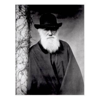 Portrait of Charles Darwin  1881 Postcard