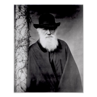 Portrait of Charles Darwin  1881 Poster