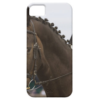 portrait of dressage horse iPhone 5 case