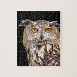 Portrait of eagle owl on black background puzzles