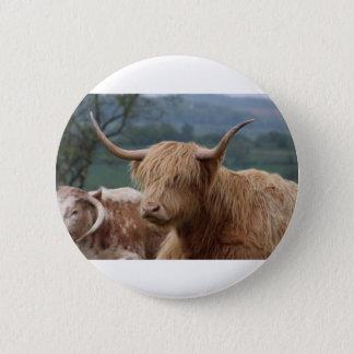 portrait of Highland Cattle 2 Inch Round Button