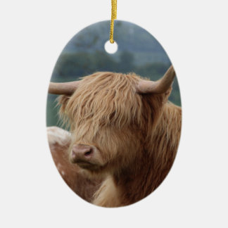 portrait of Highland Cattle Ceramic Ornament
