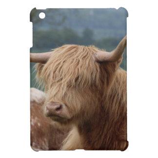 portrait of Highland Cattle iPad Mini Cases