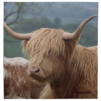 portrait of Highland Cattle Napkin