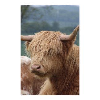 portrait of Highland Cattle Stationery