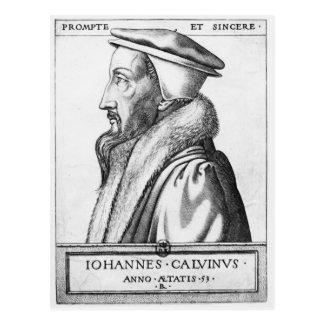Portrait of John Calvin  aged 53, 1564 Postcard