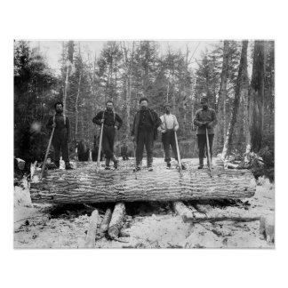 Portrait of Loggers 1890 Posters