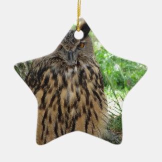Portrait of long-eared owl . Asio otus, Strigidae Ceramic Ornament