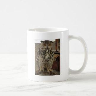 Portrait of long-eared owl . Asio otus, Strigidae Coffee Mug