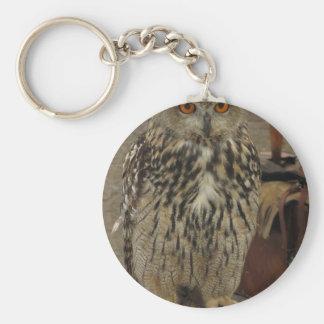 Portrait of long-eared owl . Asio otus, Strigidae Keychain