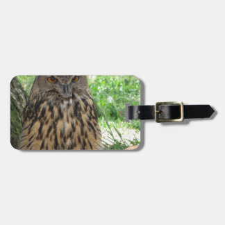 Portrait of long-eared owl . Asio otus, Strigidae Luggage Tag