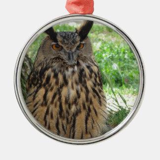 Portrait of long-eared owl . Asio otus, Strigidae Metal Ornament