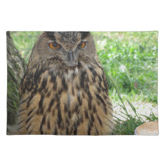 Portrait of long-eared owl . Asio otus, Strigidae Placemat
