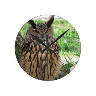 Portrait of long-eared owl . Asio otus, Strigidae Round Clock