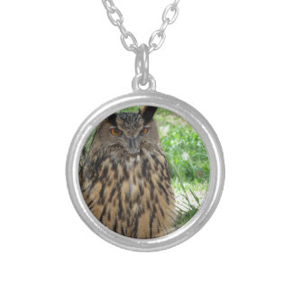 Portrait of long-eared owl . Asio otus, Strigidae Silver Plated Necklace