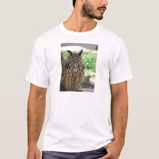 Portrait of long-eared owl . Asio otus, Strigidae T-Shirt