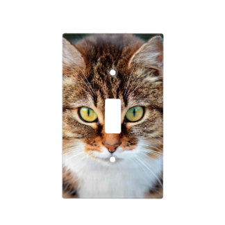 Portrait of Manx Cat Green-Eyed Light Switch Cover