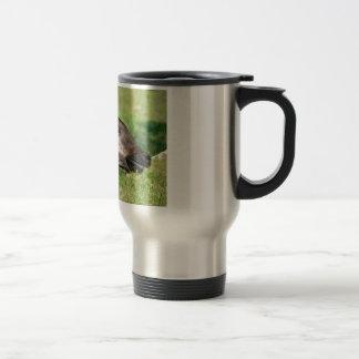 Portrait of okapi eating grass travel mug