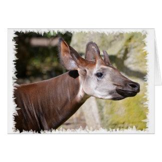 Portrait of okapi (Okapia johnstoni) Card