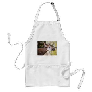 Portrait of okapi (Okapia johnstoni) Standard Apron
