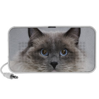 Portrait of Ragdoll cat iPhone Speakers