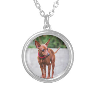 Portrait of red miniature pinscher dog silver plated necklace