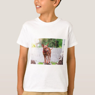Portrait of red miniature pinscher dog T-Shirt