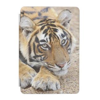 Portrait of Royal Bengal Tiger, Ranthambhor 4 iPad Mini Cover