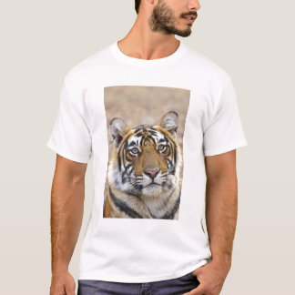 Portrait of Royal Bengal Tiger, Ranthambhor T-Shirt