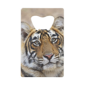Portrait of Royal Bengal Tiger, Ranthambhor Wallet Bottle Opener