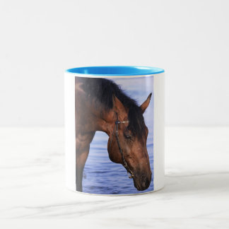 portrait of swimming horse Two-Tone coffee mug
