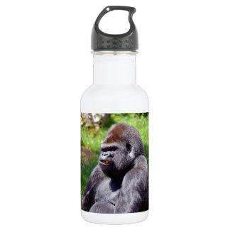 Portrait western lowland gorilla 532 ml water bottle